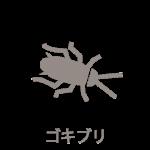 gokiburi